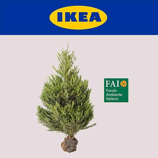 Acquista un albero di natale ikea ti rimborsa la spesa - Case ikea prefabbricate italia ...